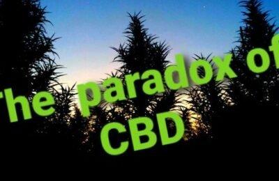 2021-04-11-Deel 1: The Paradox Of CBD - Een Wereld Vol Tegenstrijdigheden