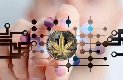 Zuid-Afrikaanse Ondernemer Koopt 's Werelds Eerste NFT Geauthenticeerde Cannabissoort Voor 20k
