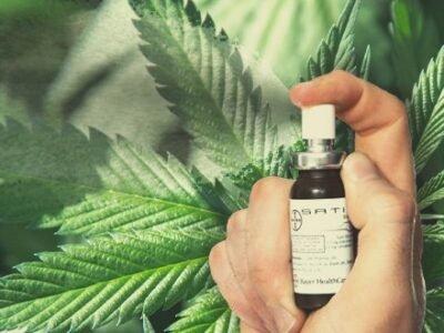 Ang Una nga Pagsulay sa Kalibutan: Mahimo ba Niyang Magamit sa Cannabis nga Buhok nga Pag-spray sa Brain Tumors?