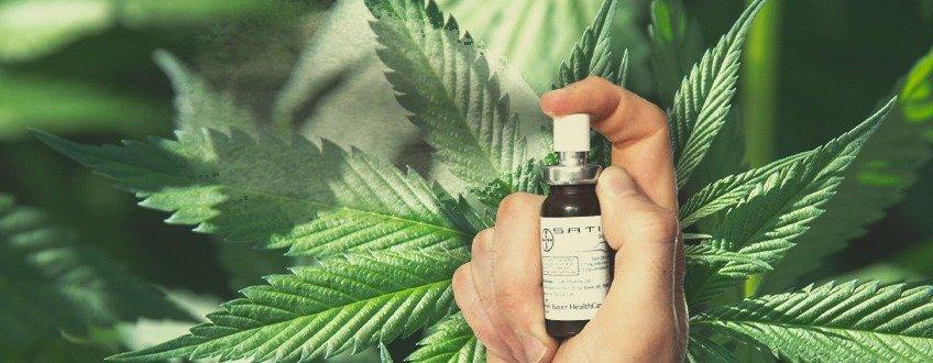 Eerste Proef Ter Wereld: Kan Deze Op Cannabis Gebaseerde Mondspray Hersentumoren Behandelen?